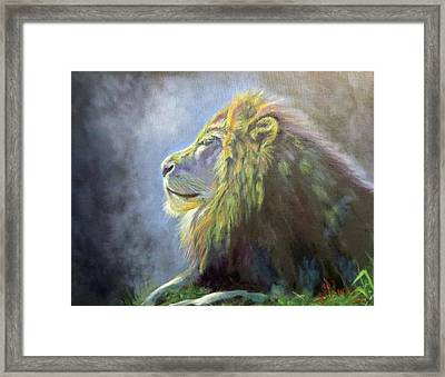 Lying In The Moonlight, Lion Framed Print