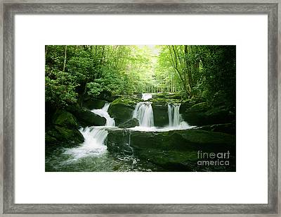 Lynn Camp Prong Falls Framed Print