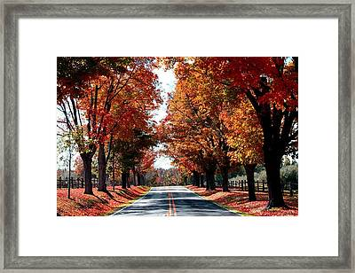 Lynn Run 4 Pa Framed Print