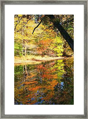 Lynn Run-5 Framed Print