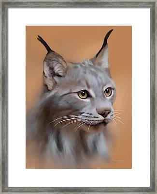 Lynx Portrait Framed Print