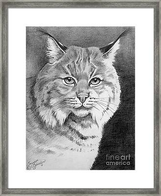 Lynx Framed Print by Suzanne Schaefer