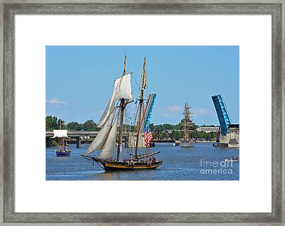 Lynx Topsail Schooner Framed Print by Rodney Campbell