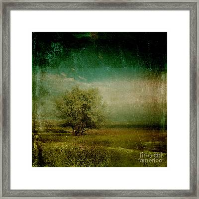 Lyrical Tree - 0109bt1e3 Framed Print