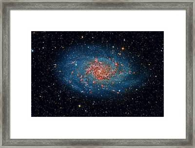 M33 Spiral Galaxy Framed Print by Celestial Images
