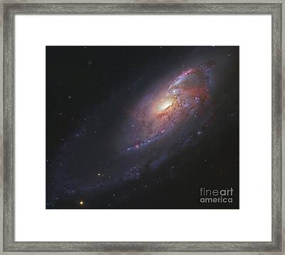 M106, Spiral Galaxy In Canes Venatici Framed Print by Robert Gendler