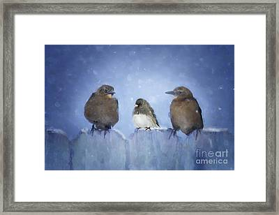 Mabel...who Invited Her Framed Print by Betty LaRue