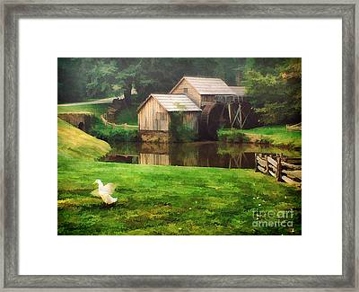 Mabrys Mill And The Welcoming Committee Framed Print by Darren Fisher