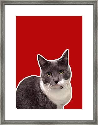 Mac Attack-custom Order Framed Print by Linda Woods