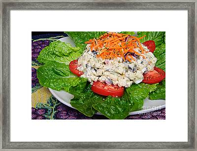 Macaroni Salad 2 Framed Print by Andee Design