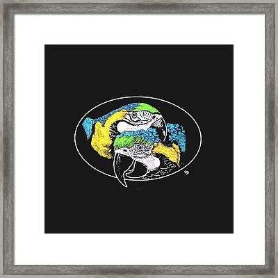 Macaw Pair Framed Print by Jeanie Beline