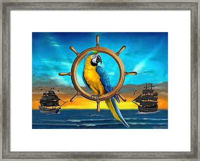 Macaw Pirate Parrot Framed Print