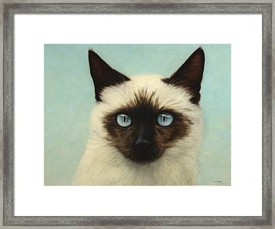 Machka Framed Print by James W Johnson