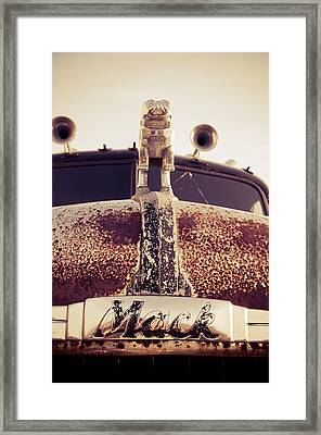 Mack Headshot Framed Print by Off The Beaten Path Photography - Andrew Alexander