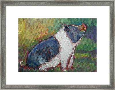 Mack The Pig Framed Print
