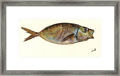 Mackerel Scad Framed Print