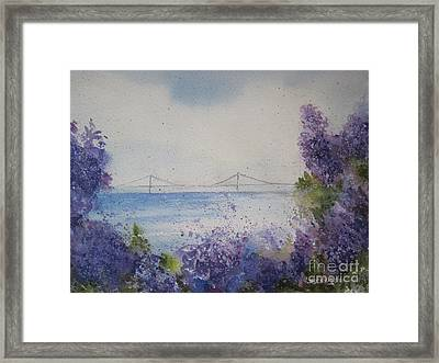 Mackinac Island Lilacs Framed Print by Sandra Strohschein