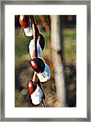 Macro Hdr Framed Print by Frozen in Time Fine Art Photography