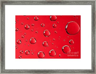 Macro Water Drop On Red Framed Print by Sharon Dominick