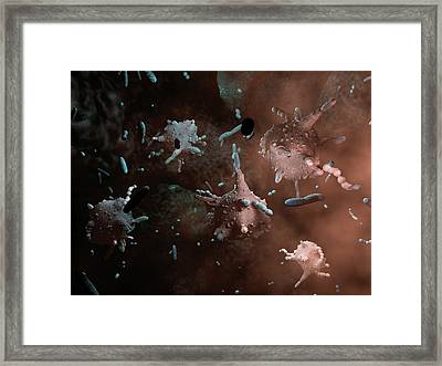 Macrophages Attacking Bacteria Framed Print by Hipersynteza