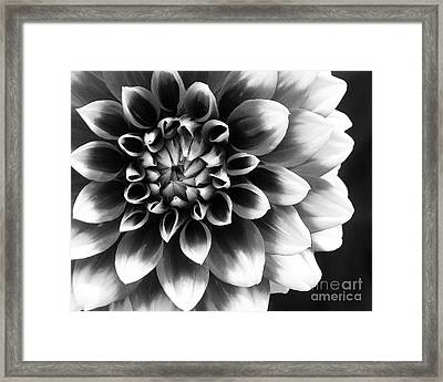 Mad About You Framed Print