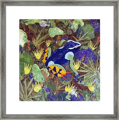 Madagascar Mantella Framed Print by Lynda K Boardman