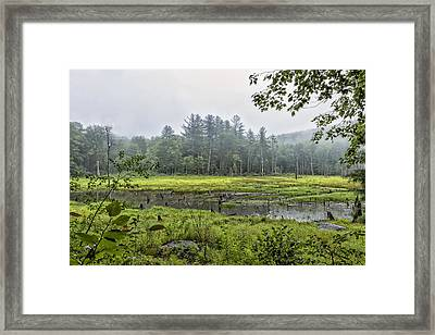 Madame Sherri Summer Pond Framed Print