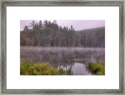 Framed Print featuring the photograph Madame Sherri's Pond IIi by Tom Singleton