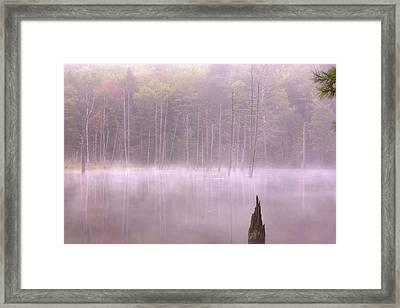 Framed Print featuring the  Madame Sherri's Pond by Tom Singleton