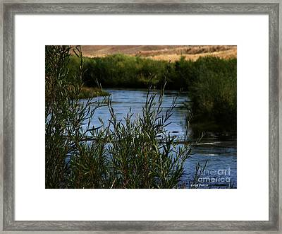 Madison River Framed Print by Greg Patzer