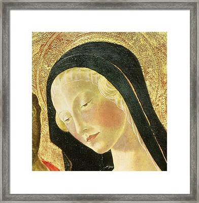 Detail Of The Madonna Framed Print by Neroccio di Landi