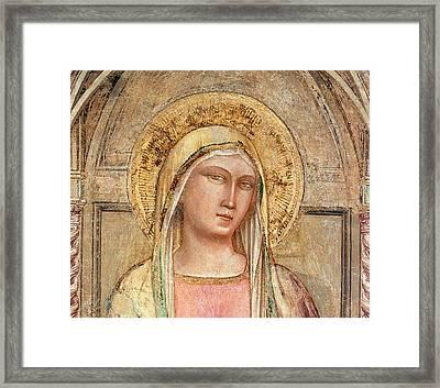 Madonna Del Parto Framed Print