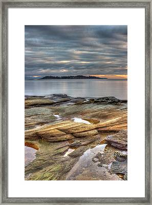 Madrona Sunrise Framed Print