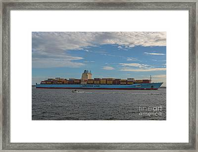Maersk Line Beaumont Framed Print