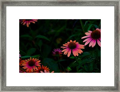Magenta And Orange Framed Print