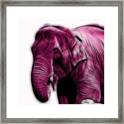 Magenta Elephant 3374 - F - S Framed Print