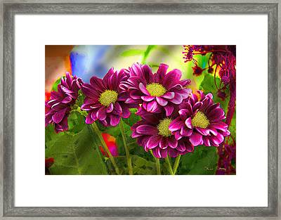 Magenta Flowers Framed Print by Chuck Staley