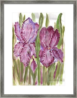 Magenta Iris Framed Print by Debbie Wassmann