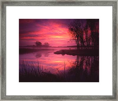 Magenta Morning Framed Print by Ray Mathis