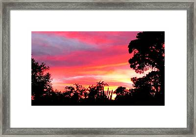 Framed Print featuring the photograph Magenta Sunset by DigiArt Diaries by Vicky B Fuller