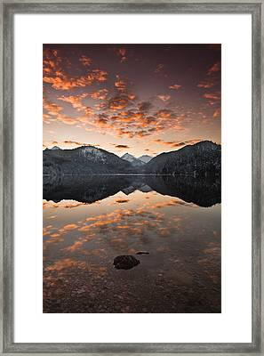Magestic Framed Print by Jorge Maia