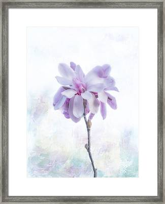 Framed Print featuring the photograph Maggie by Elaine Teague