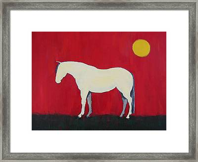 Maggie The Horse In The Moonlight Framed Print