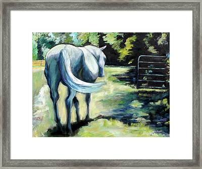 Maggie The Horse In The Pasture Framed Print