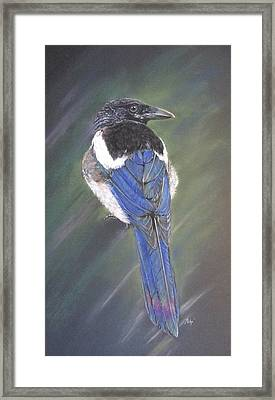 Maggie Framed Print by Turea Grice