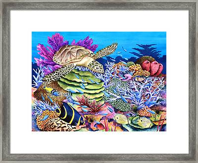 Magic Carpet Ride Framed Print by Carolyn Steele