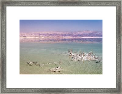 Magic Colors Of The Dead Sea Framed Print