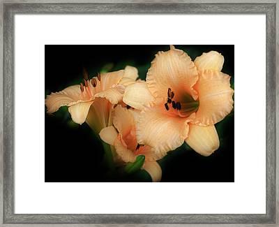 Magic Glow Framed Print by Bruce Bley
