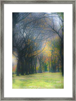 Magic. Here. In Nyc Framed Print by Gabrielle Schertz