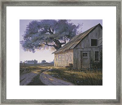 Magic Hour Framed Print by Michael Humphries